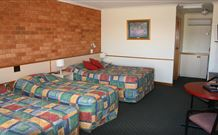 Newell Motor Inn - Narrandera - Accommodation ACT